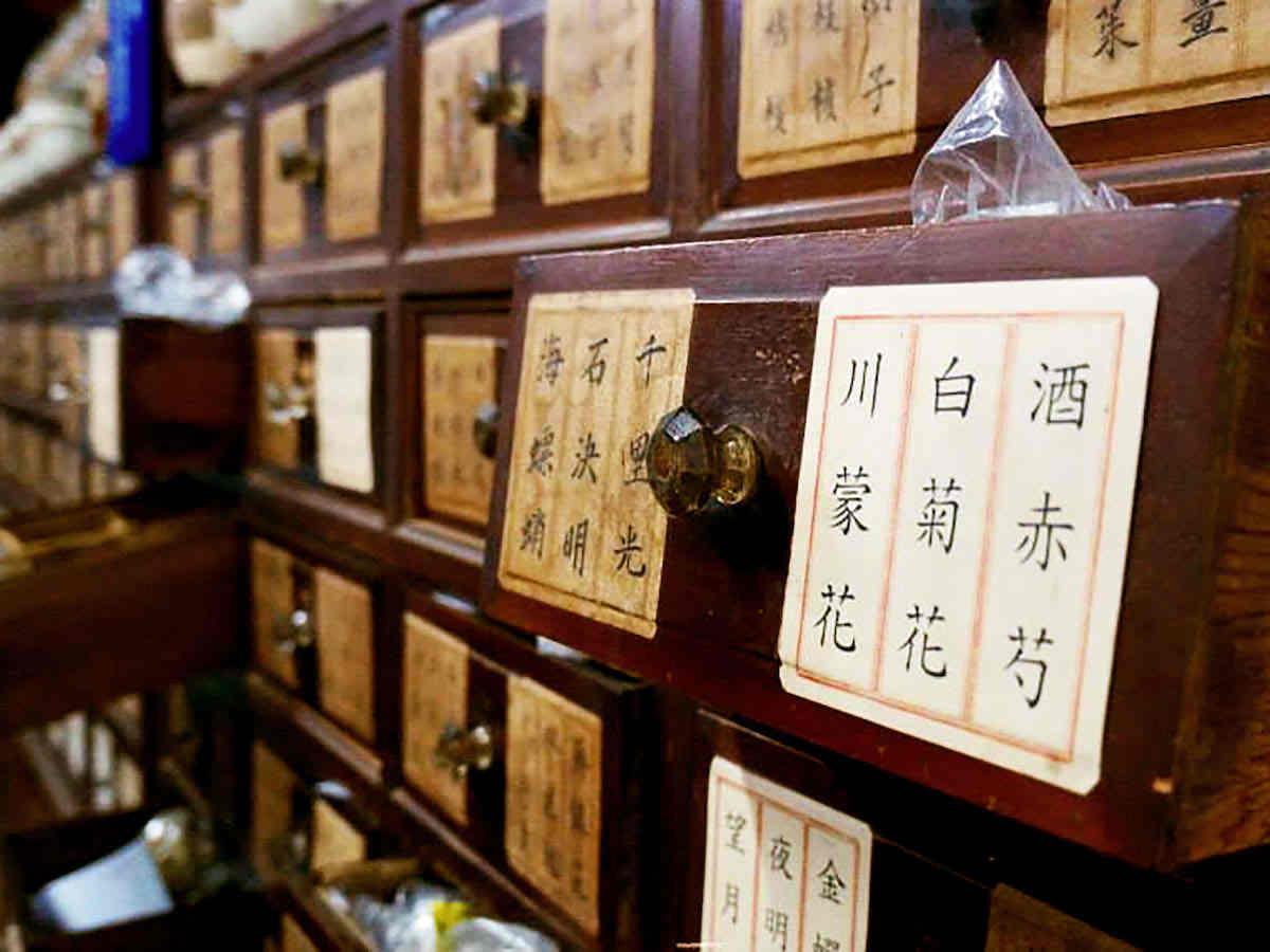 Corso Online Certificato di Introduzione alla Medicina Tradizionale Cinese