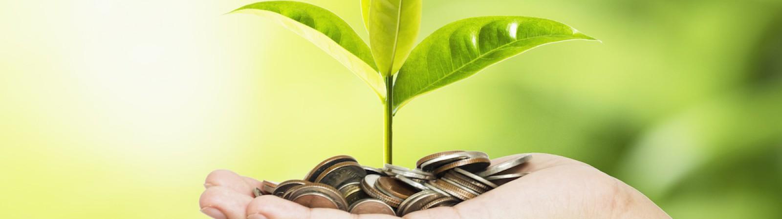 Corso Online Certificato Imparare a Risparmiare